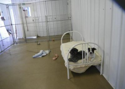 kennel may 053